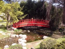 Pont japonais en bois jardins Albert kahn - Boulogne (92)