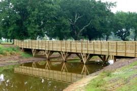 Passerelle bois - Le Teich (33)