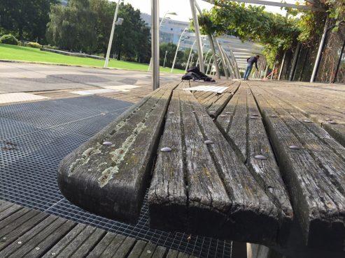 Sundeck bois Jardin Atlantique